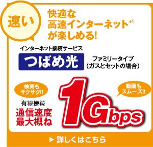 【速い!】快適なインターネットが楽しめる!1Gbps